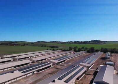 Baiada Poultry Farm Rhynie SA (100kW)