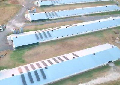 Poultry Farm Luddenham NSW (100kW)