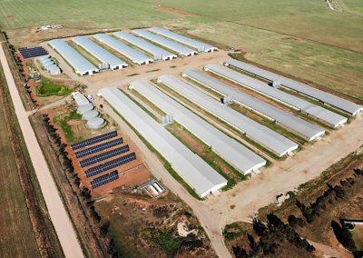 Poultry Farm Port Wakefield SA (200kW)