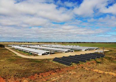 Poultry Farm Port Wakefield SA (100kW)