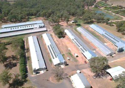 Poultry Farm Silverdale NSW (100kW)
